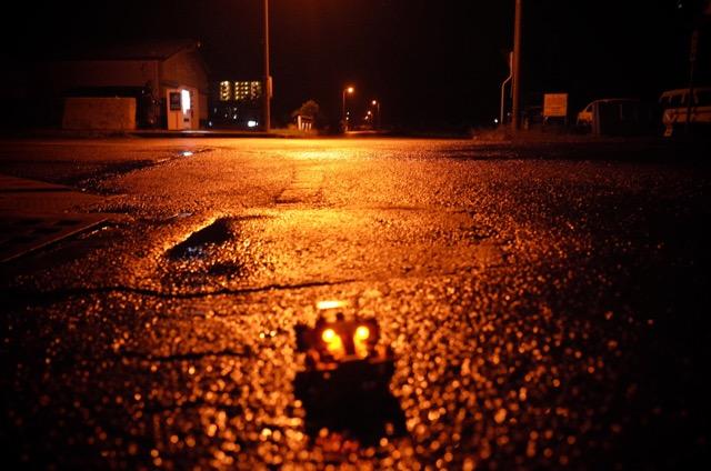 皇帝in夜の石垣島その3