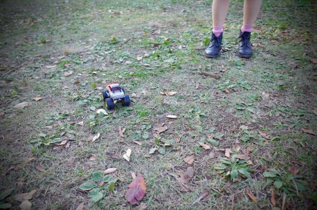 代々木公園草レース2