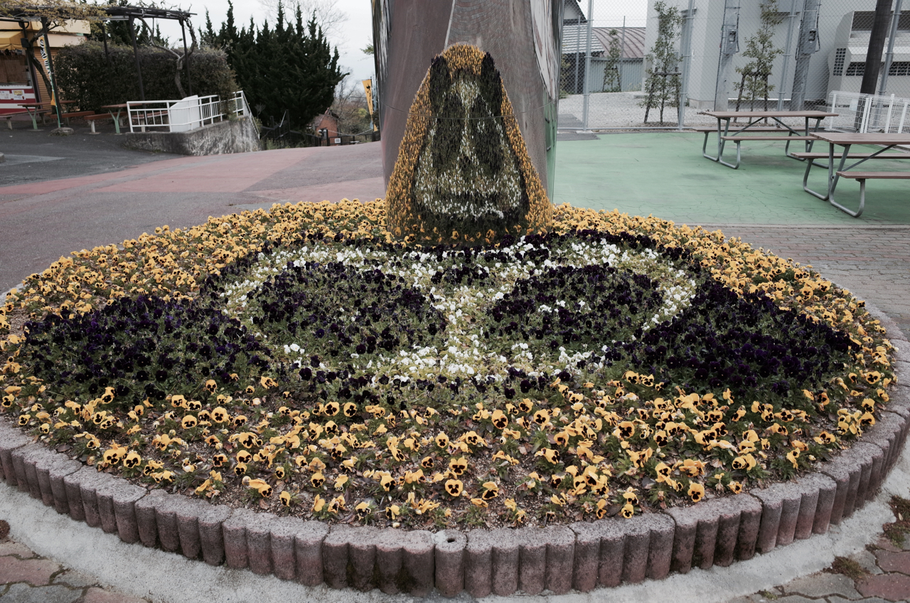 生駒山上遊園地08