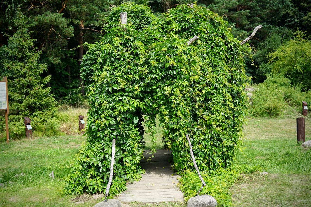 郊外の公園の緑のゲート
