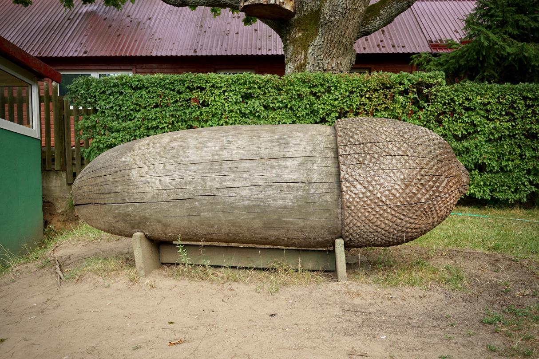 巨大ドングリ