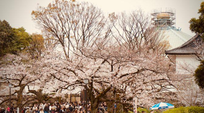 【ミニ四駆百景】桜と皇帝2019