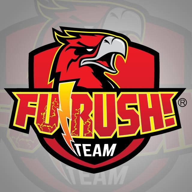 チームフラッシュロゴ