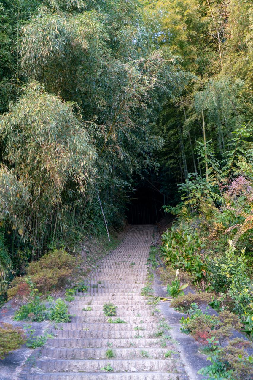 酒船石への階段道
